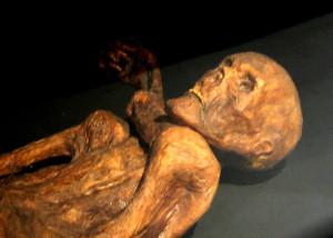reconstruction Ötzi mummy Prehistory Museum Quinson, CC-BY-SA 120